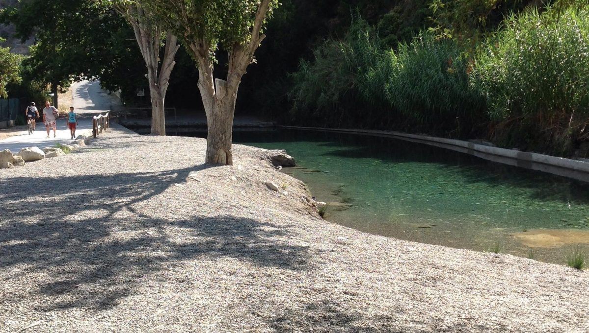 11520 River swimming pool