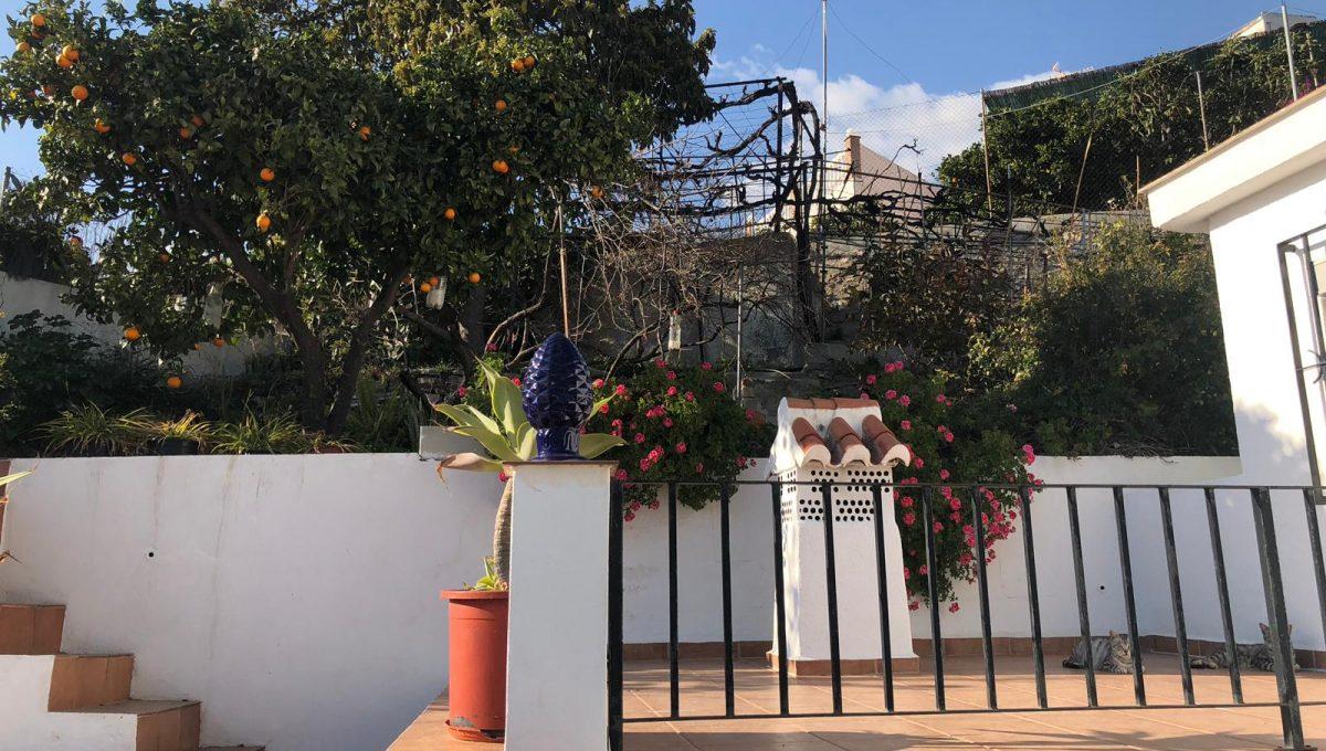 Casa Mateano (11)