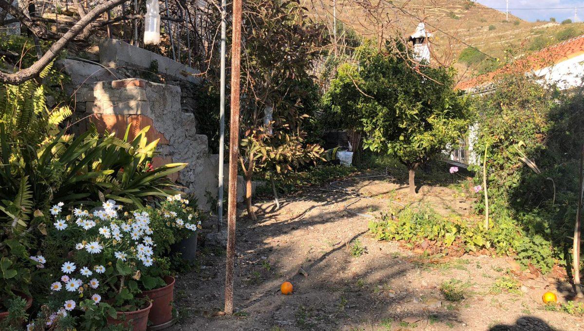 Casa Mateano (7)